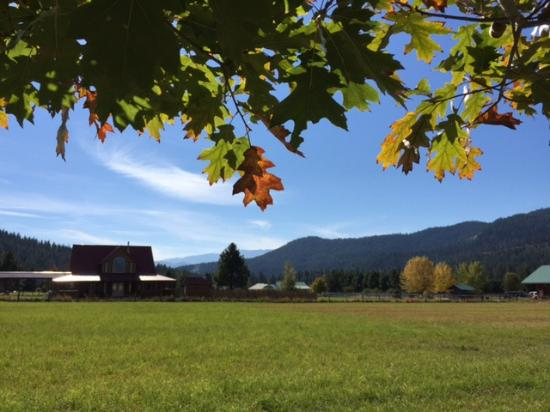 Beaver Valley Lodge: scenery next to property
