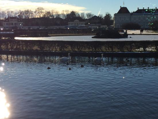 Hotel zur Mühle: Окрестности - пруды около Двореца Нимфенбург
