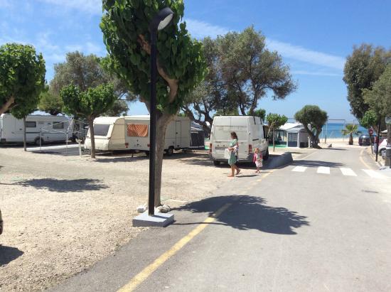 Camping Playa Paraiso: Parcelas en segunda línea, a escasos metros del mar