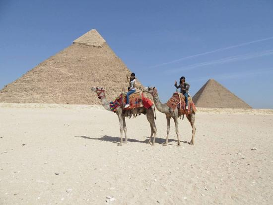 Nature Travel Egypt Tour - Day Tours