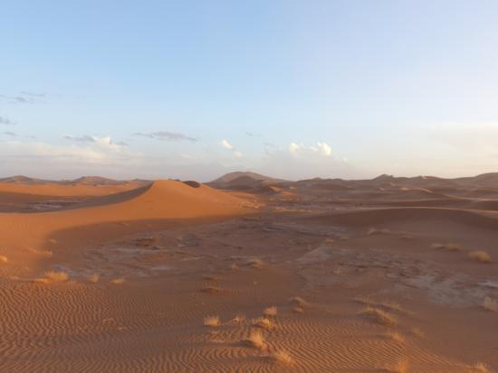 Sahara Tours International - Day Tours: Dunes de Erg Chegaga