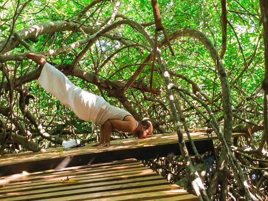 Bentota, Sri Lanka: Yoga poses