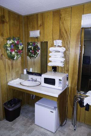 Big Bear Motel: Small microwave and frig by sink outside the bathroom.