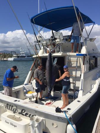Our 105 sailfish picture of catch fish cabo san jose for San jose del cabo fishing charters