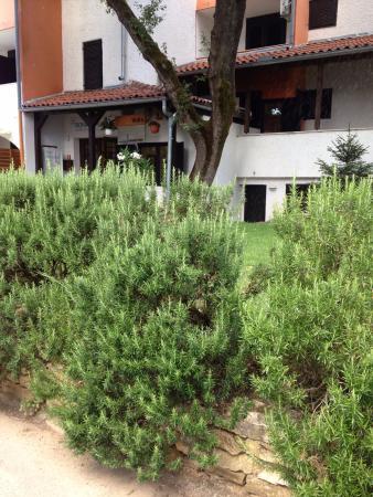 Cervar Porat, Kroasia: Aparthotel Volta 2