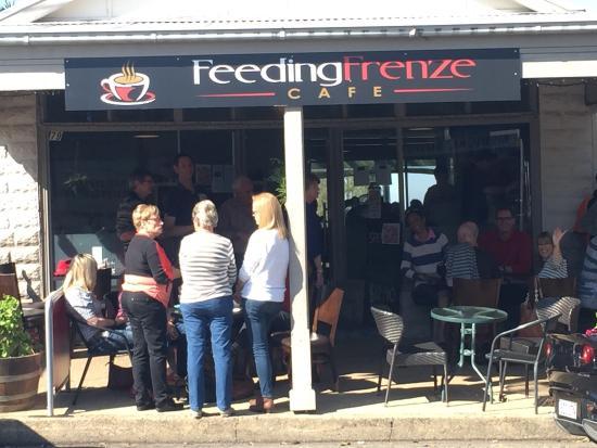 Kurrajong, Avustralya: Feeding Frenze