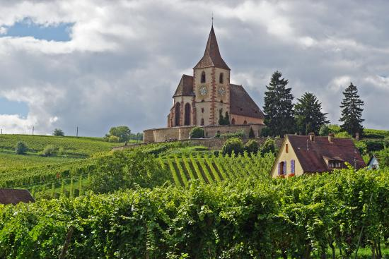 Sentier Viticole des Grands Crus : Church in the vineyards of Hunawihr