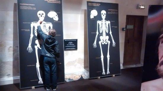 Le Grand-Pressigny, Frankreich: Verschil tussen moderne mens en Neanderthaler