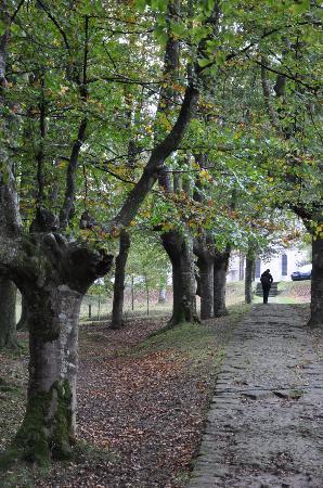 Urkiola Natural Park: interior