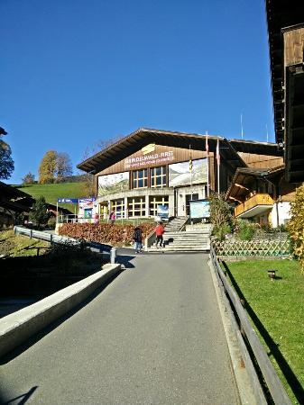 Grindelwald, Suiza: IMG20151023141541_large.jpg