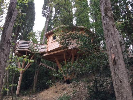 la vue depuis la terrasse picture of les cabanes dans. Black Bedroom Furniture Sets. Home Design Ideas