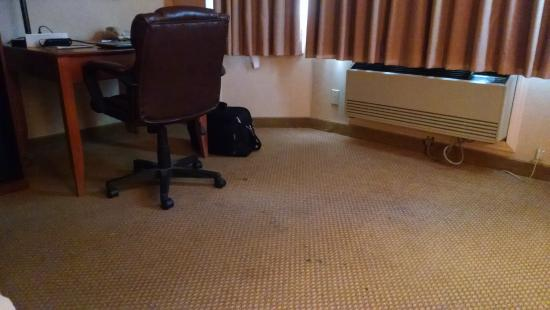 BEST WESTERN PLUS Placerville Inn: stained worn carpet