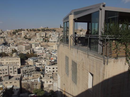 najlepszy wybór niezawodna jakość wybór premium photo0.jpg - Picture of Wild Jordan Center, Amman - TripAdvisor