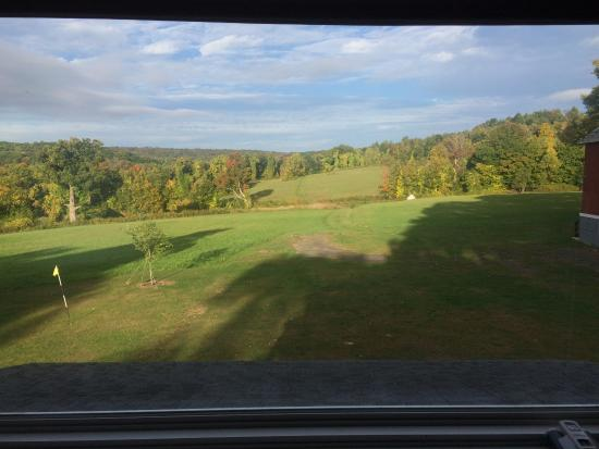 The Inn At Mount Pleasant Farm: Picture window in the morning