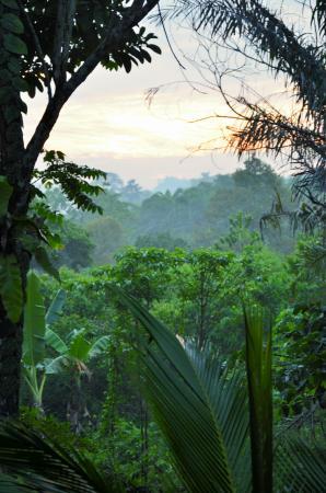 Sepilok Forest Edge Resort : Sunrise