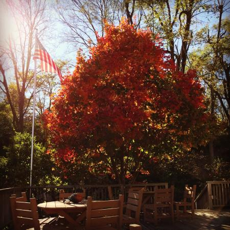 Brownville, NE: Beautiful fall afternoon at the winery
