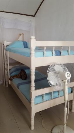 Single Bunk Beds Picture Of Kenyaways