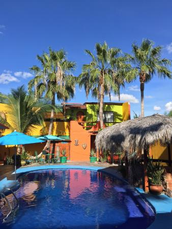 Leo's Baja Oasis: Absolutely amazing place. Leo and Romina are simply top class hosts.