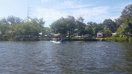 St. Petersburg / Madeira Beach KOA: Great hidden location. Best KOA yet!