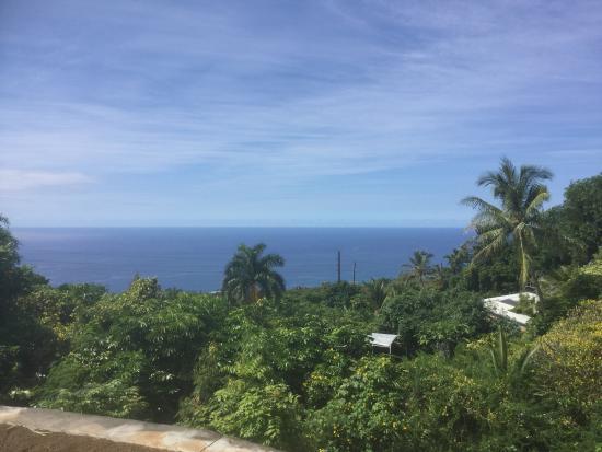 Home Tours Hawaii : Terrific!