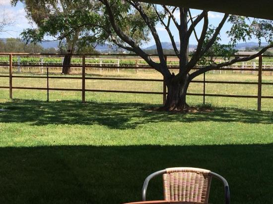 Farmer's Daughter Wines: Lunch time view