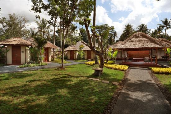Private pool villa with jungle view picture of temuku for Garden pool villa ubud