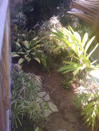 Les Artistes: Remington room garden
