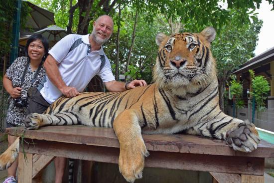 Mae Rim, Thailand: nice pussy