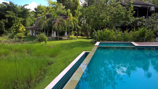 The Puka Boutique Resort: Pool over looking the rice fields