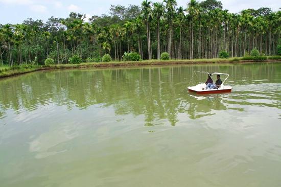 Resort boating