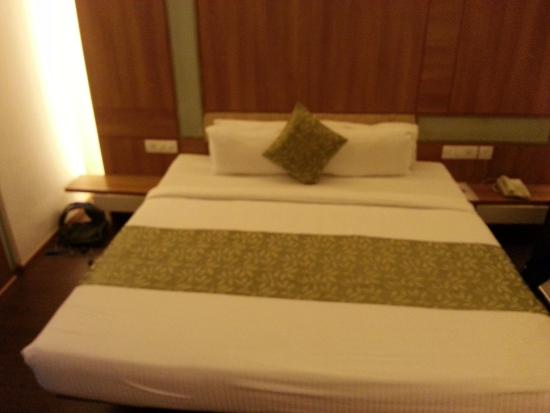 Hotel Central Avenue: The room.