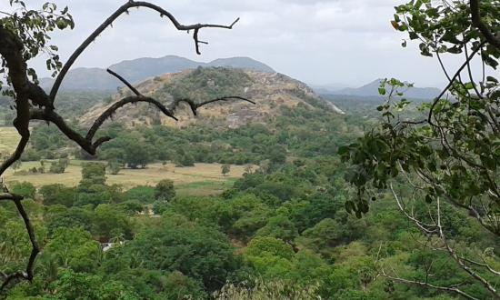 Yapahuwa, Σρι Λάνκα: View From Yahahuwa Rock