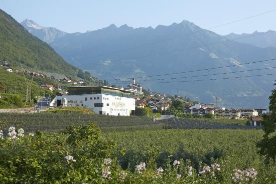 Meran Burggrafler Winery