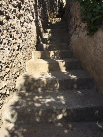 Giardino dei Limoni B&B : The steps