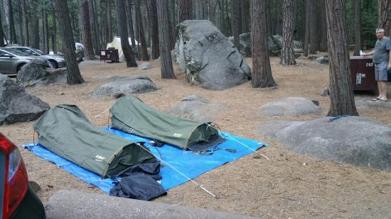 Upper Pines Campground : camp