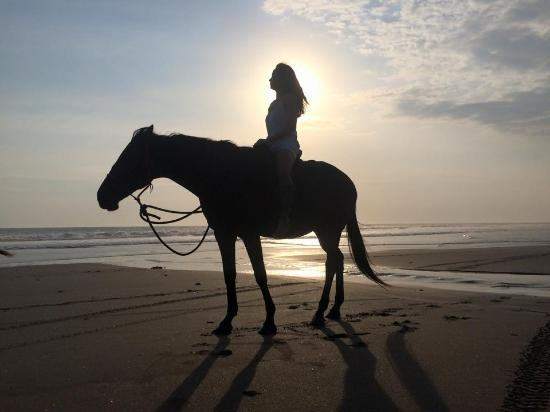 Bali Island Horse and ATV: Horse riding