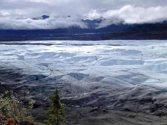 Wrangell-St Elias National Park and Preserve, AK: Trail
