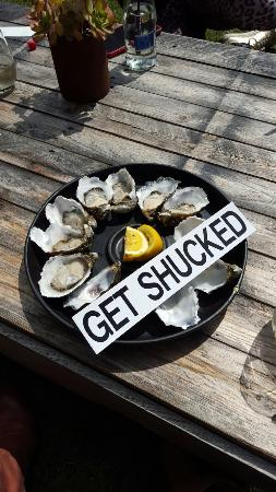 Get Shucked Oyster Photo
