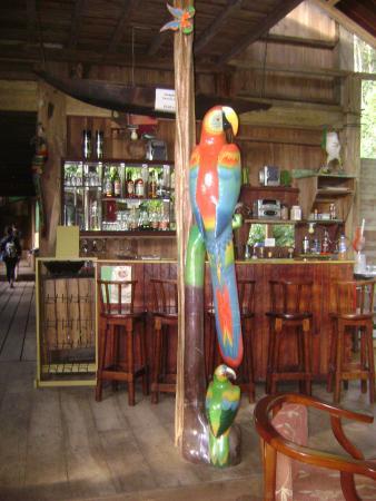 Amarongachi Jungle Eco-Lodge : Ingresso