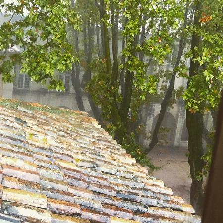 Hotel Cloitre Saint Louis: View over roof from room