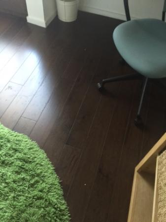 Hotel Indigo Athens-University area: Dusty but trendy floors in guest room