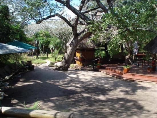Mtunzini, África do Sul: Tembe lodge
