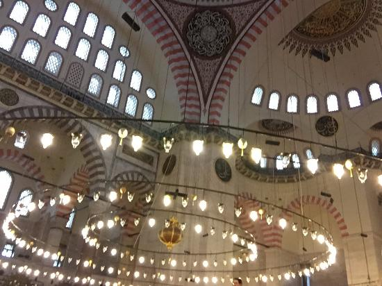 Guided Sightseeing Tours - Dilek Acikalin Turka