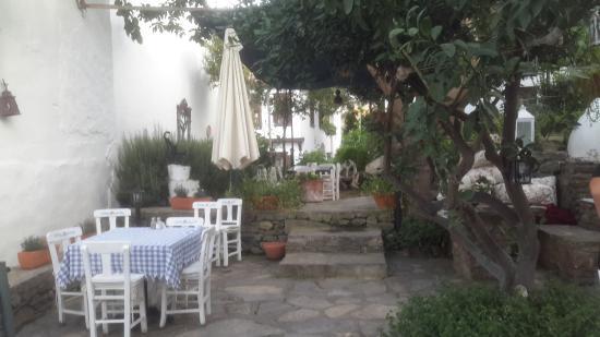 Markiz Konaklari Boutique Hotel: Garden
