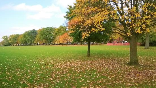 Kings Heath Park: wide open spaces