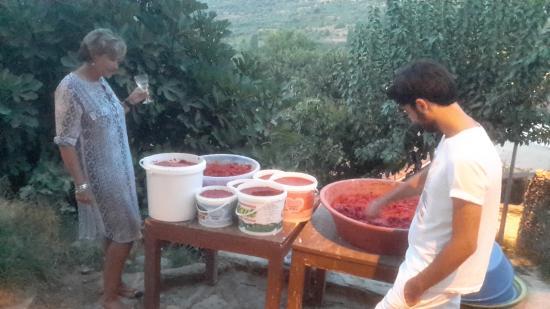 Gulgun Abla'nin Yeri: Home made tomatoe and pepper paste in the making.