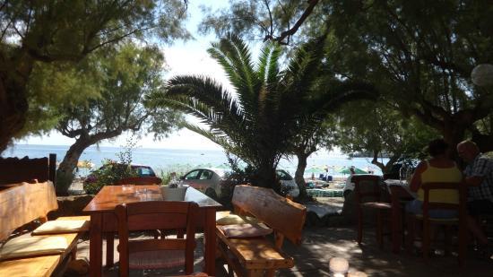 Damnoni Taverna : Schöner Sitzplatz mit toller Aussicht auf´s Meer
