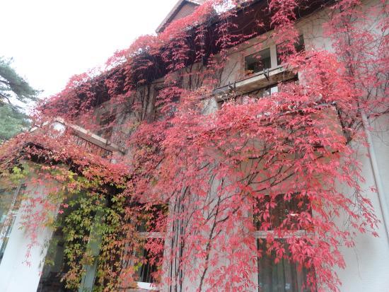 Hotel Vandenis: Hotel view only