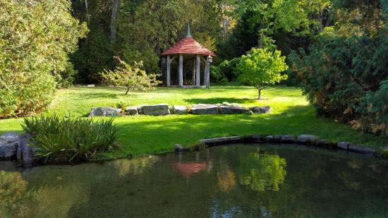 Thuya Gardens: Garden in October