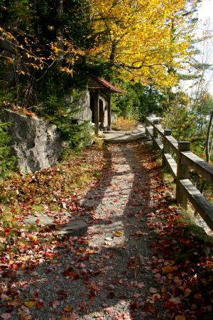 Thuya Gardens: Garden path in October
